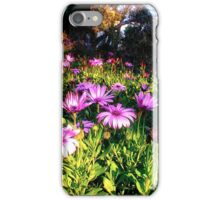 flowers for the postman iPhone Case/Skin