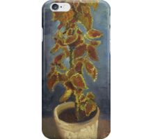 Vincent Van Gogh - Flame Nettle In A Flowerpot. Still life with flowers: blossom, nature, botanical, floral flora, wonderful flower, plants, cute plant for kitchen interior, garden, vase iPhone Case/Skin