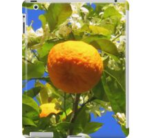 orange dans son oranger iPad Case/Skin