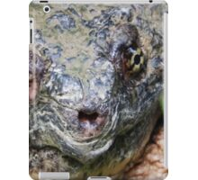 Common Snapping Turtle Close Up iPad Case/Skin