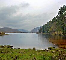 Glenveagh National Park by Arie Koene