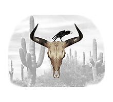 Desert Crow Photographic Print