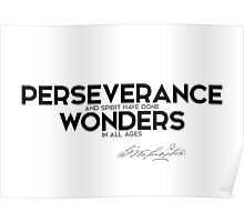 perseverance done wonders - george washington Poster