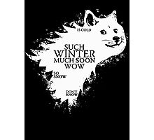 Game of doge Game of Thrones Photographic Print