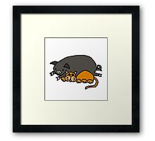 Cool Funny orange Cat with Pot-Bellied Pig Framed Print