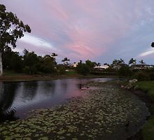 Pink Sunset over the Lily Lake by FangFeatures