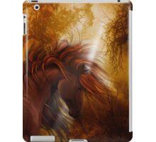 Falls Horse iPad Case/Skin