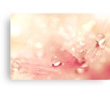Peach Drops  Canvas Print