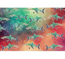Geometric Sharks Photographic Print