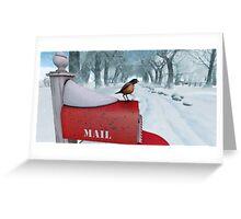 Snow Bird Greeting Card
