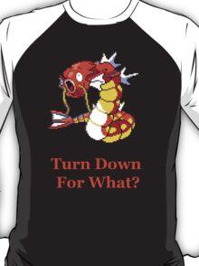 Magigyarakarp T-Shirt