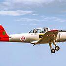 OGMA DHC-1 Chipmunk T.20 1365 G-DHPM by Colin Smedley