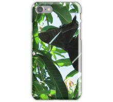 Tropical Swallowtail Moth (Lyssa Zampa) iPhone Case/Skin