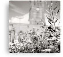 Kneel Before The Cathedral with the Flowers Canvas Print