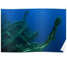 Diver at the MS Zenobia shipwreck.  Poster