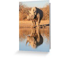 Black Rhino - Reflection of Power - African Wildlife  Greeting Card