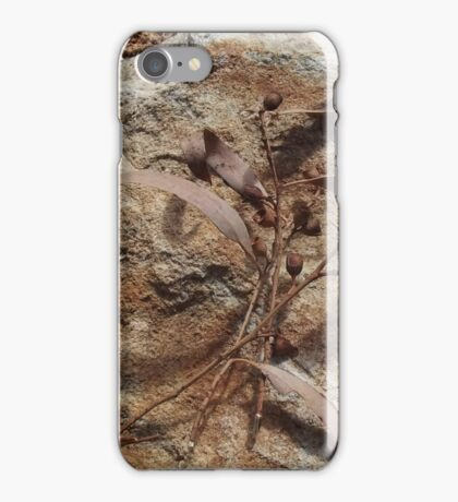 Eucalyptus leaves and nuts  iPhone Case/Skin