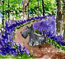 Scottie Dog in Bluebell Woods watercolour by archyscottie