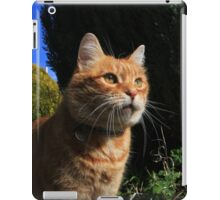 Ginger cat in cottage garden iPad Case/Skin