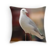 Seagull Concentrating Throw Pillow