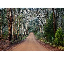 Country Road Photographic Print