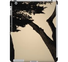 Monterey Cypress II Toned iPad Case/Skin