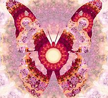 Mandala Butterfly 1 - Art by Sharon Cummings by Sharon Cummings