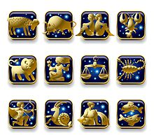 Zodiac signs by maystra