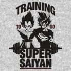 Training to go Super Saiyan v2 by skilfulstarship