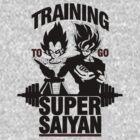 Training to go Super Saiyan v2 by skilfulstarship