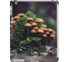 Faerie Ring iPad Case/Skin