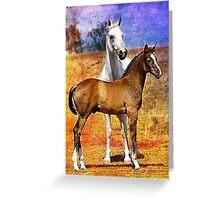 Grey Arabian Mare & Colt Foal Greeting Card
