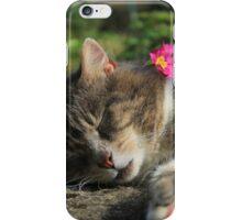 Sleeping cat with primrose iPhone Case/Skin