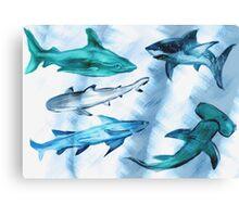 Arty Sharky Canvas Print
