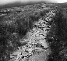 Rocky Path - Yorkshire by Rhys Herbert
