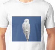 Dreams DO come true Unisex T-Shirt