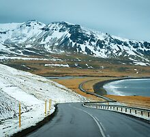 Open Road by Svetlana Sewell