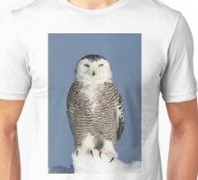 Tip of the iceberg Unisex T-Shirt