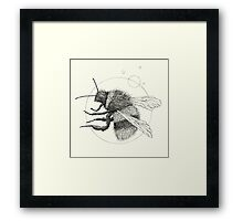Wildlife Analysis IX Framed Print