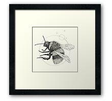 Wildlife Analysis IX Framed Print