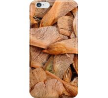 Fall Has Arrived iPhone Case/Skin
