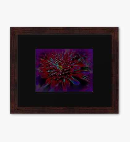 Sipping Deep Purple Framed Print
