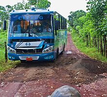 Ecuador. Galapagos Islands. A Giant Tortoise and a Bus. by vadim19