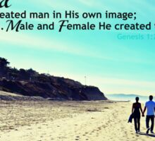 Male and Female He created them Sticker