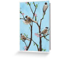 Sparrows in spring Greeting Card