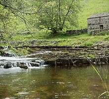 Barn beside the river by Judi Lion