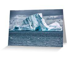Albatross Iceberg - Antarctica Greeting Card
