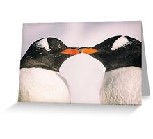 Penguin Kiss - Antarctica Greeting Card
