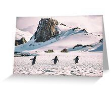 Three Amigos - Antarctica Greeting Card