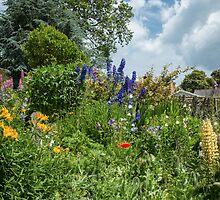 Cottage garden border by Judi Lion